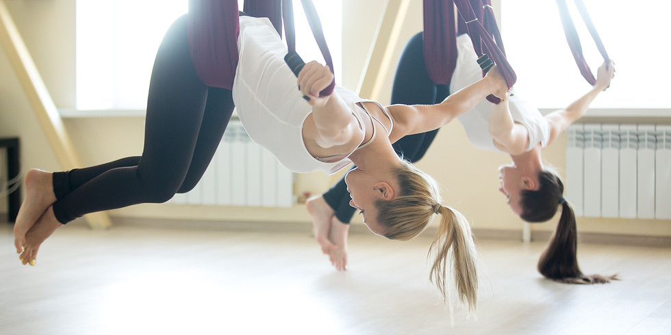 Aerial Workshop for Yoga & Pilates Teachers