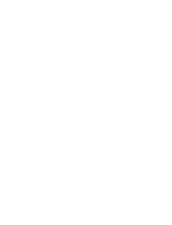 Point3 Security Logo