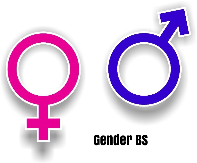 gender bs cover 2