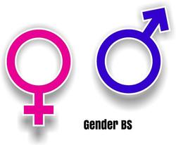 gender bs cover 2