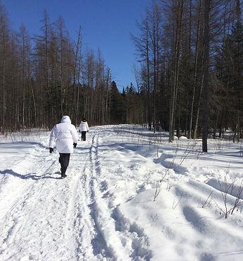 marche thérapeutiqe à Québec