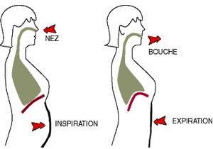 respiration-ventrale.jpg