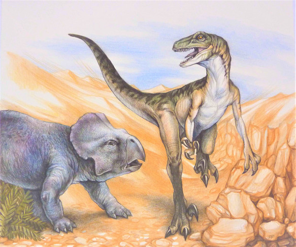 velicoraptor2.jpg