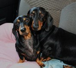 Two of our champion patients