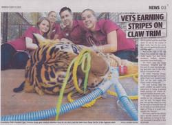 Tiger Claw Trim