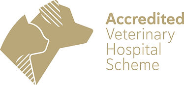 ASAV Accredited Logo