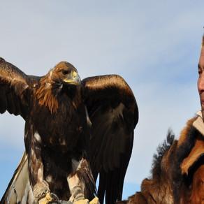 The Three Best Festivals Mongolia