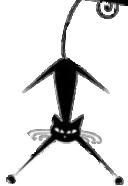 cat graphic