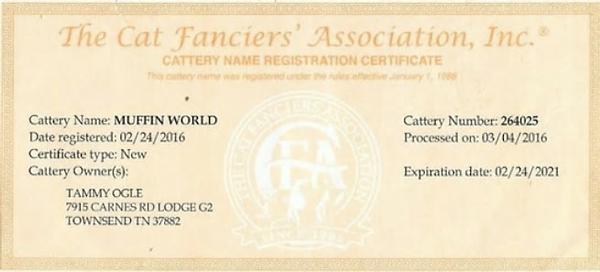 CFA Cattery Certificate