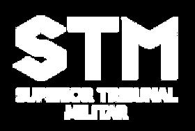 logo_stm.png