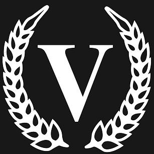 V logo Black Background.PNG
