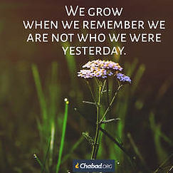 We grow when we remember we are not who we were yesterday.