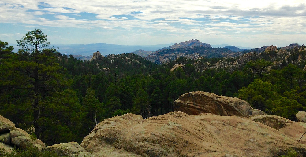 It puts joy in my heart to be with God  - Mt Lemmon, AZ