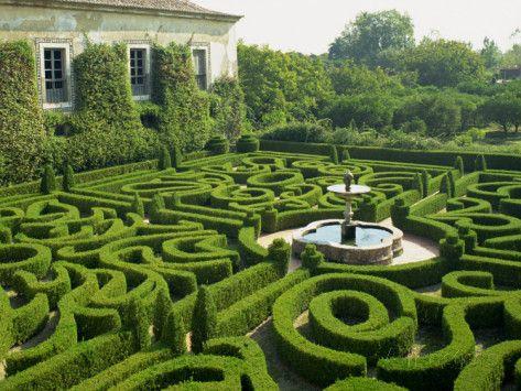 Labyrinth of Life Memoirs