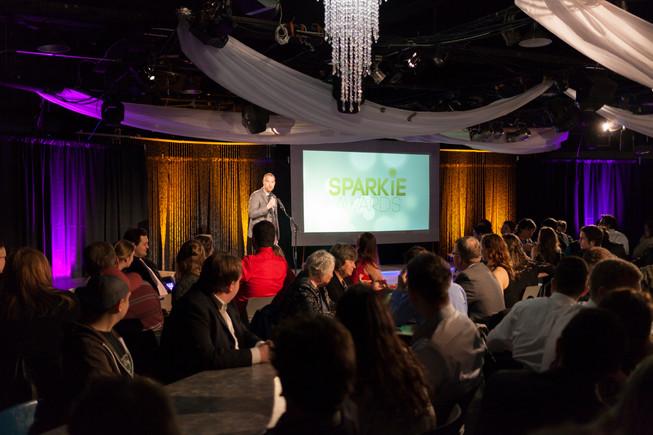 TVNM Sparkie Awards 032216_MG_9671.jpg