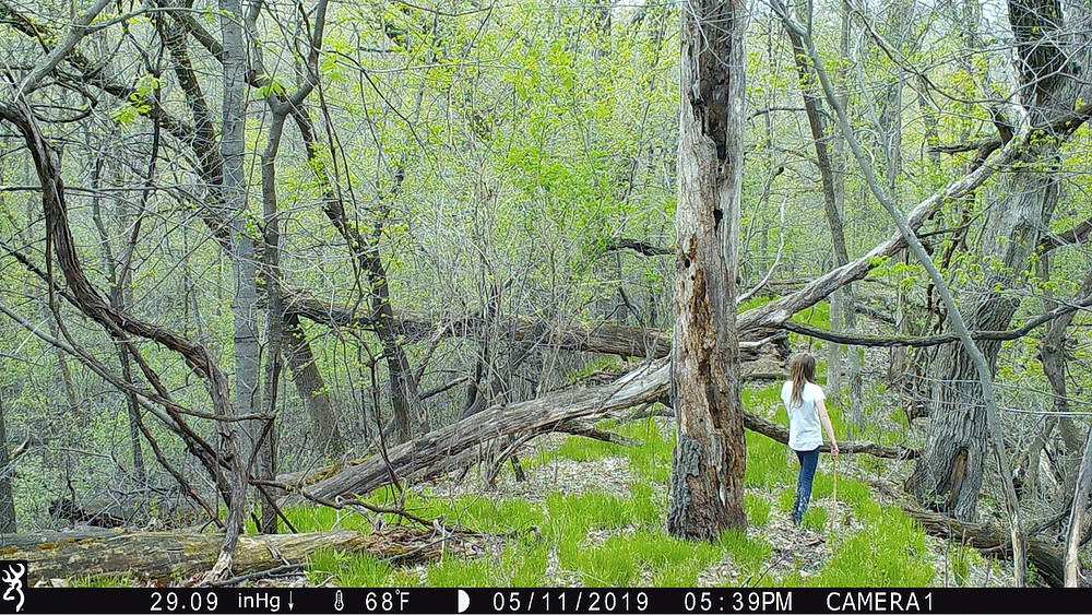 trail camera human landscape