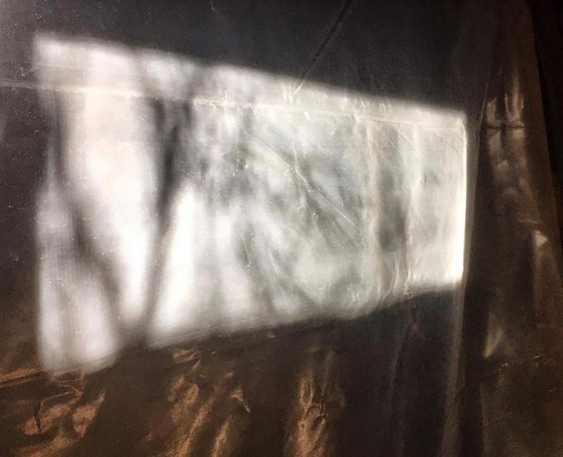 Shadows on Plastic Sheet, Basement, 2019, iPhone Capture