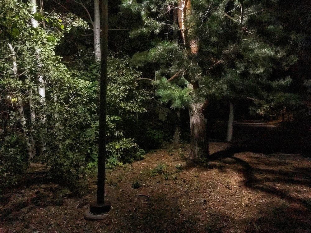 Night Light, 2019, iPhone Digital Photograph Frank Meuschke Landscape Photograph night