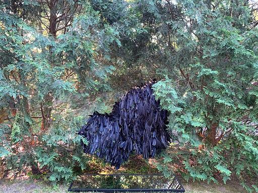 "Temporary installation/yard experiment, ""Mirror Wisdom (feather cloak),"" 2020 Rebecca Krinke"