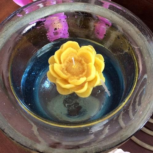 Flor de lotus flutuante
