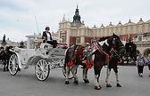 Krakow, horse cab