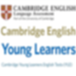 cambridge yle.png