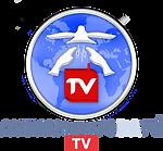 logo-tv20.png