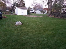 Fall Leaf Clean Up in Roseville MN