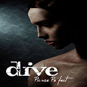 Zhach Kelsch recorded drums for the Dive album Picture Perfect. Jim Wirt