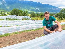 Des paniers de légumes Bio toute l'année cultivés par nos producteurs locaux.