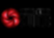 CNS Logo White.png