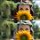 Thumbnail: Perfect Portrait Brushes