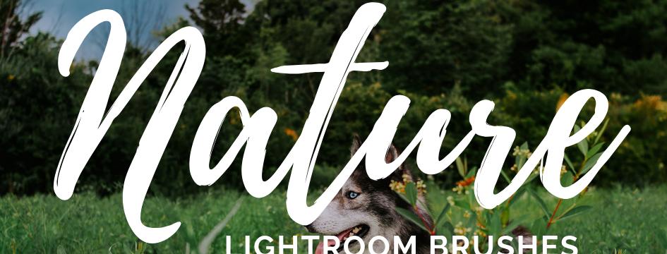 Nature Lightroom Brushes
