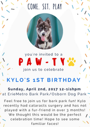 Pawrt Invite Design