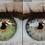 Thumbnail: Eye Color Lightroom Brushes