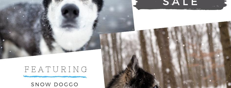 LK Winter // Snowdoggo Preset Bundle