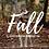 Thumbnail: Fall Preset Pack