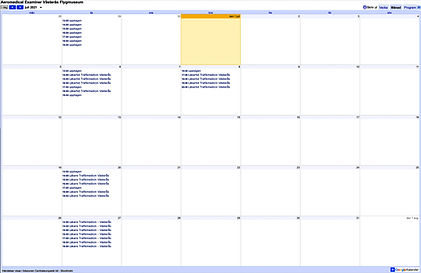 Google kalender Kolja.jpg