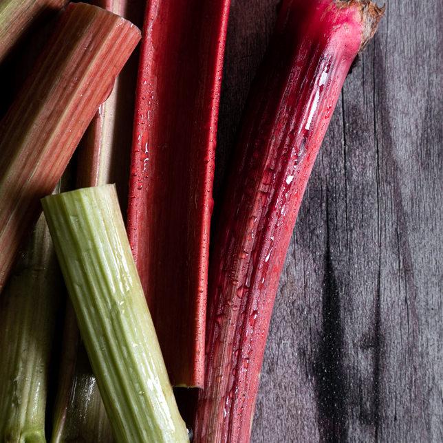 Photographie culinaire - Rhubarbe