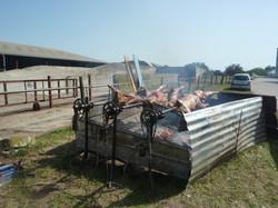 L'agneaux sera bientôt cuit !