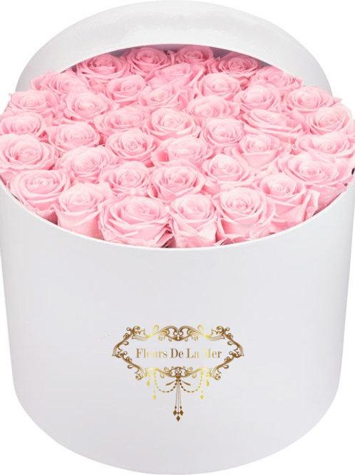 Pink Roses (White Box)