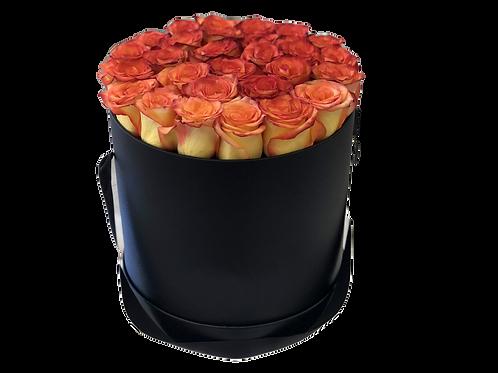 Vibrant Roses (Black Box)