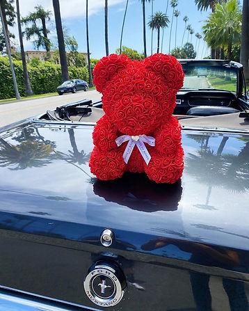 Red Rose Bear 3.jpg