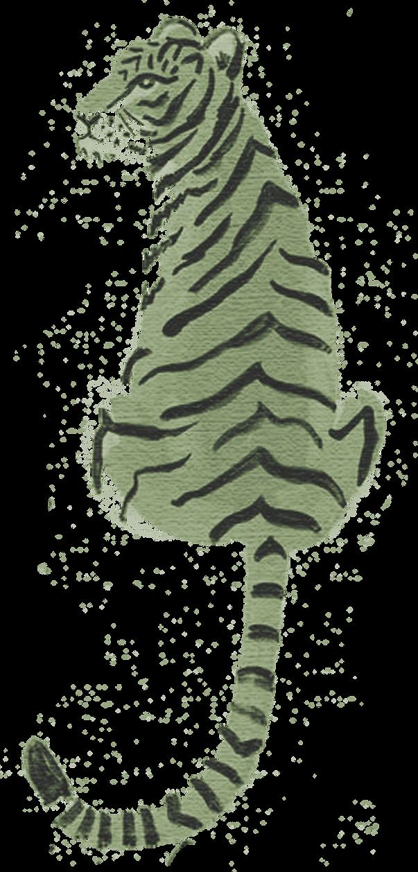 Watercolor TigerB - TranspBkg - op18.png