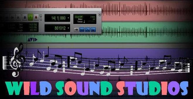Wild Sound Studios Logo