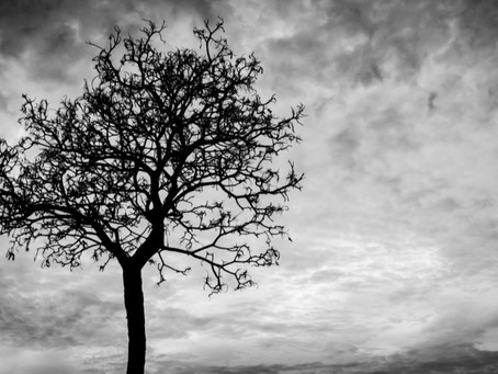 Psalm 88 — Facing Death