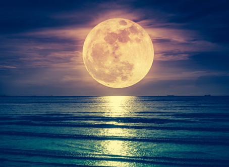 Reflections On The Moon