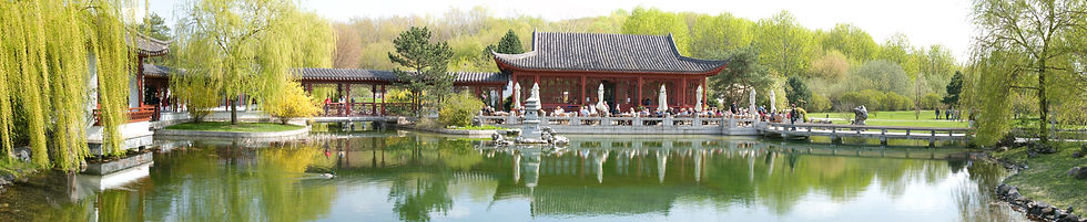 Qi Gong lang.jpeg
