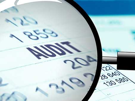 Pro Forma Financials 2 - Auditing the Spreadsheet