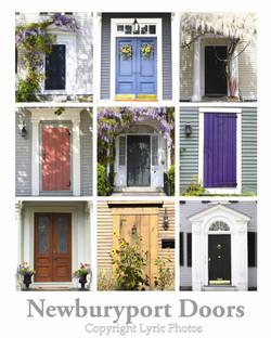 Newburyport Plum Island Doors Poster